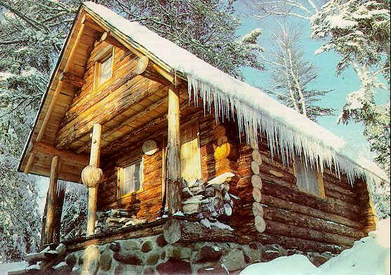 build a small log cabin  1