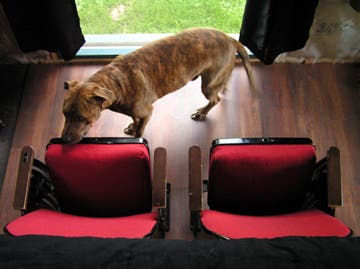 Theater Seats and Lazlo