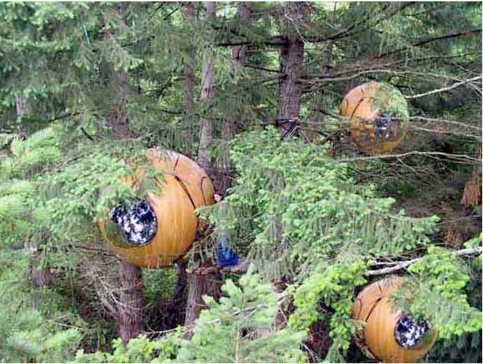 Tree Pods Vancouver Island