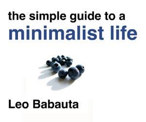 Minimalist-Life-300x250