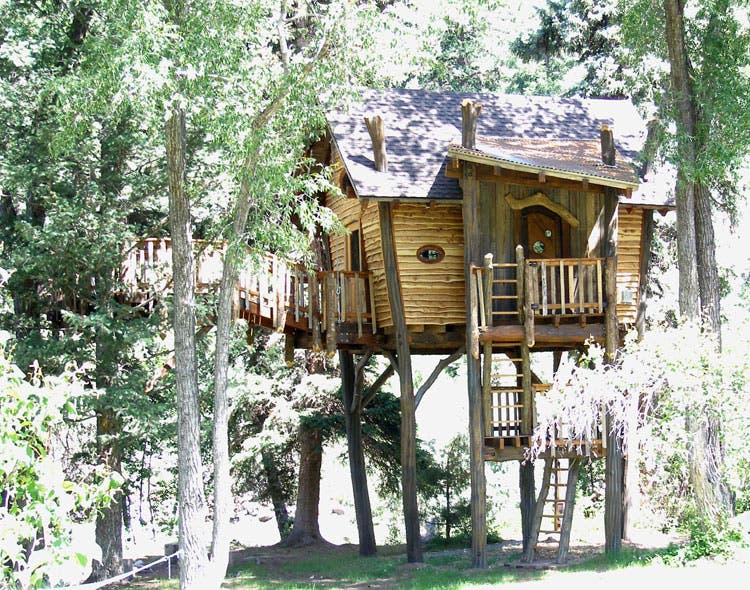 Green line architects tree house for Tree houses plans and designs