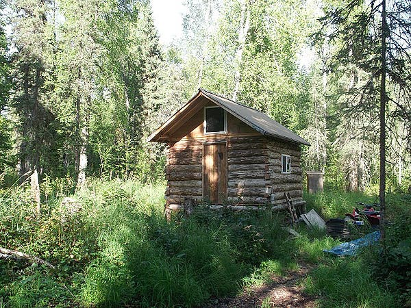 Simple skinny d log cabin for Building a house in alaska