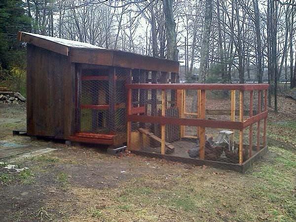 pallet hen house back