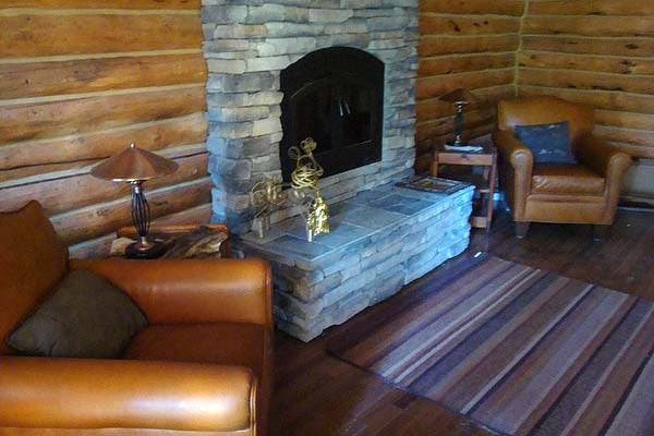 cabin stove insert