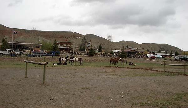 horses thru town