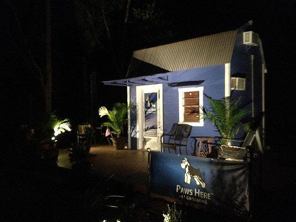 dog grooming business at night