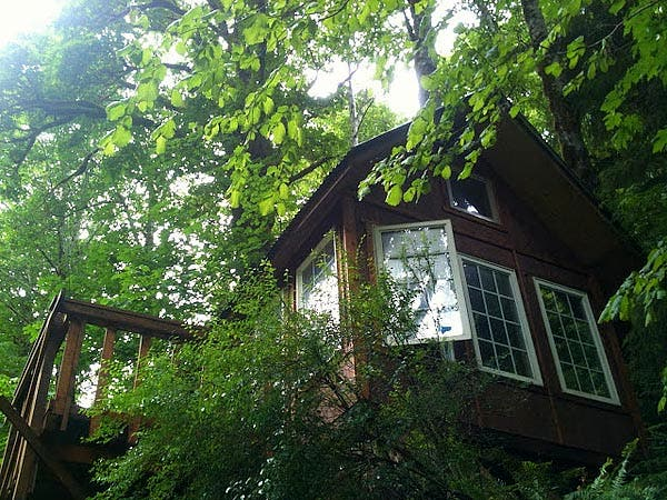 looking up to cabin