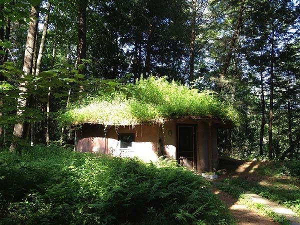 Tiny Grassy House