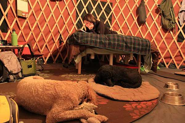 lounging inside the yurt