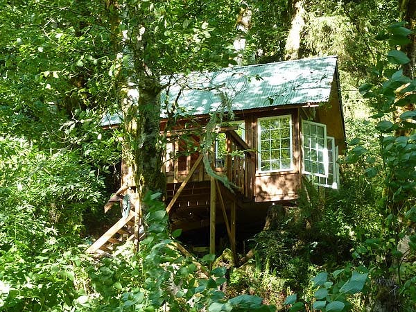 Travis's cabin