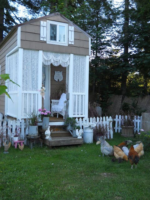 chickens and porch