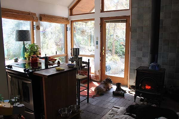 Day House_Woodstove