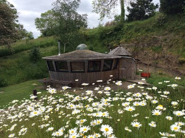 yurt and daisies