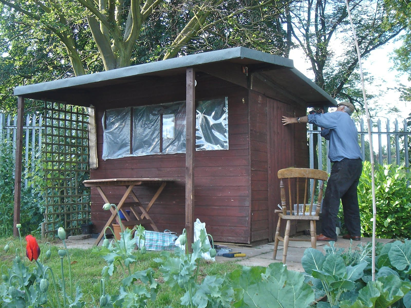 Allotment sheds tiny house blog for How to build my house