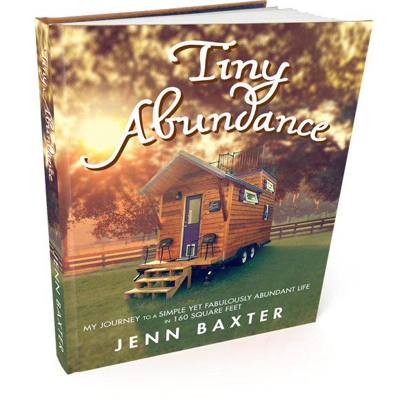 Tiny Abundance eBook
