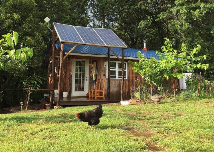 HomesteadHoney-TinyHouse-garden