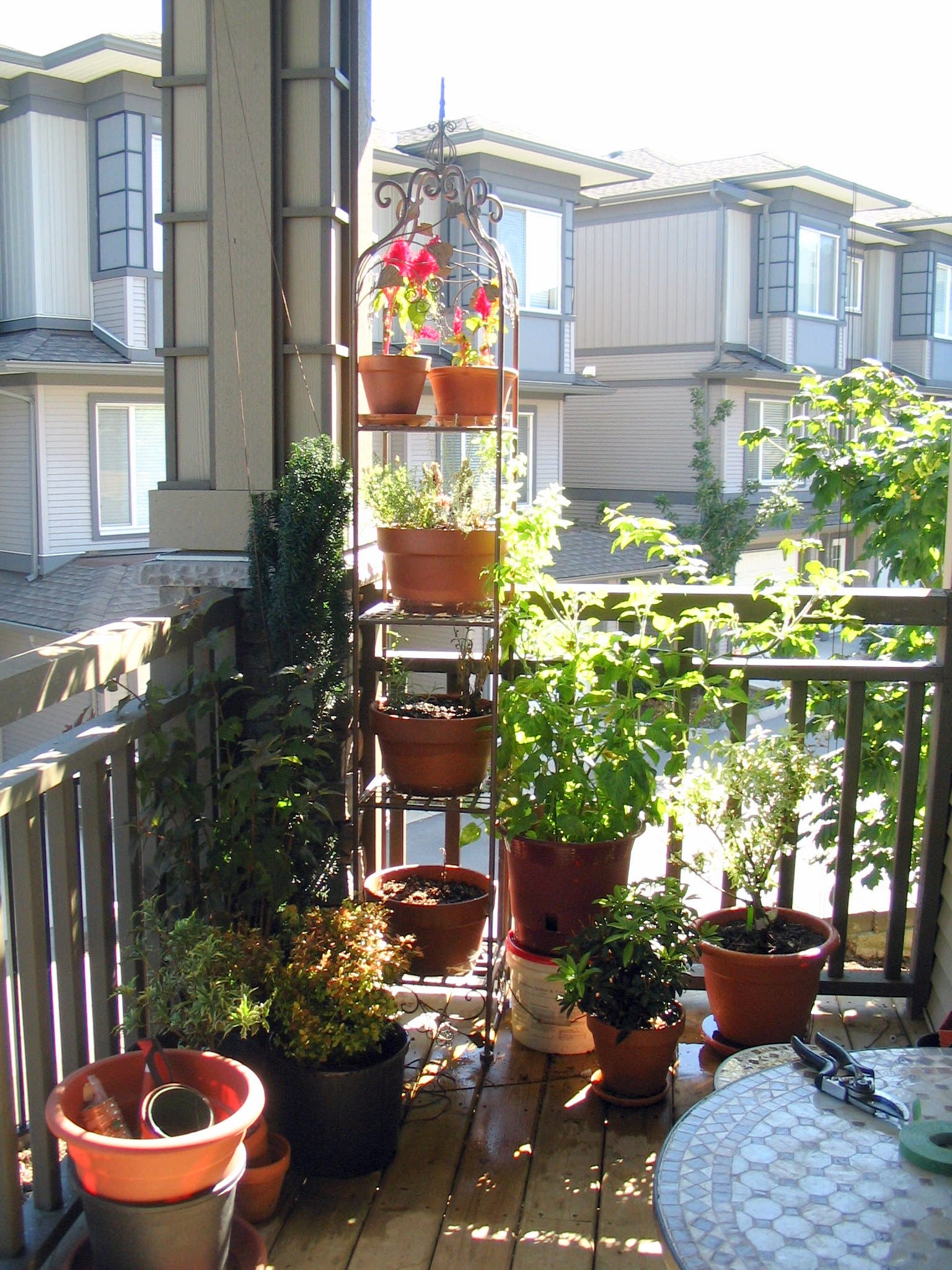 container vegetable gardening ideas in tiny spaces top 10 tips - Small Patio Vegetable Garden Ideas