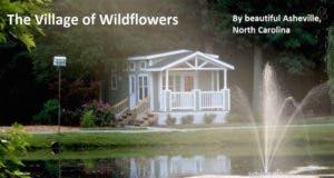 The Meadows - tiny house community
