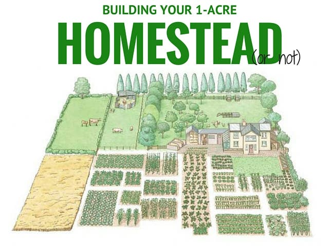 Building Your 1 Acre Homestead Or Not Tiny House Blog