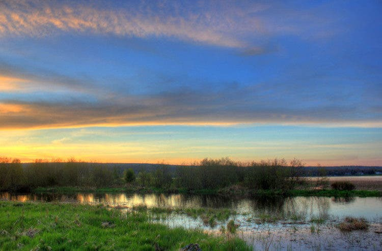 Gfp-michigan-upper-peninsula-dusk-skies-over-marshy-landscape