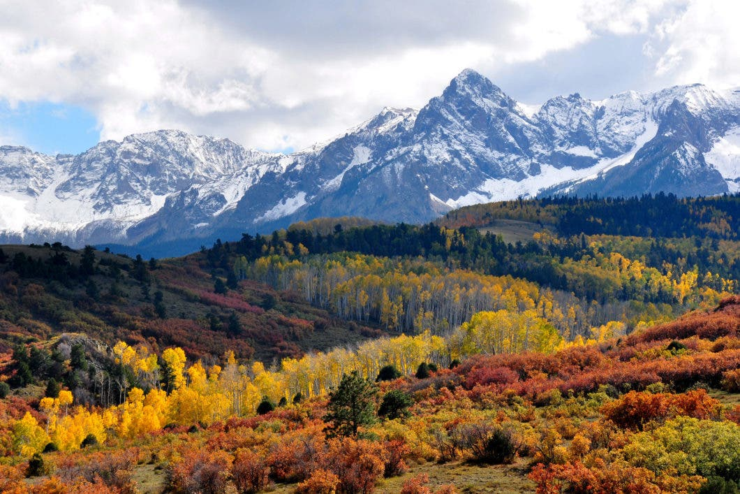 fall_colors_near_ridgway_colorado