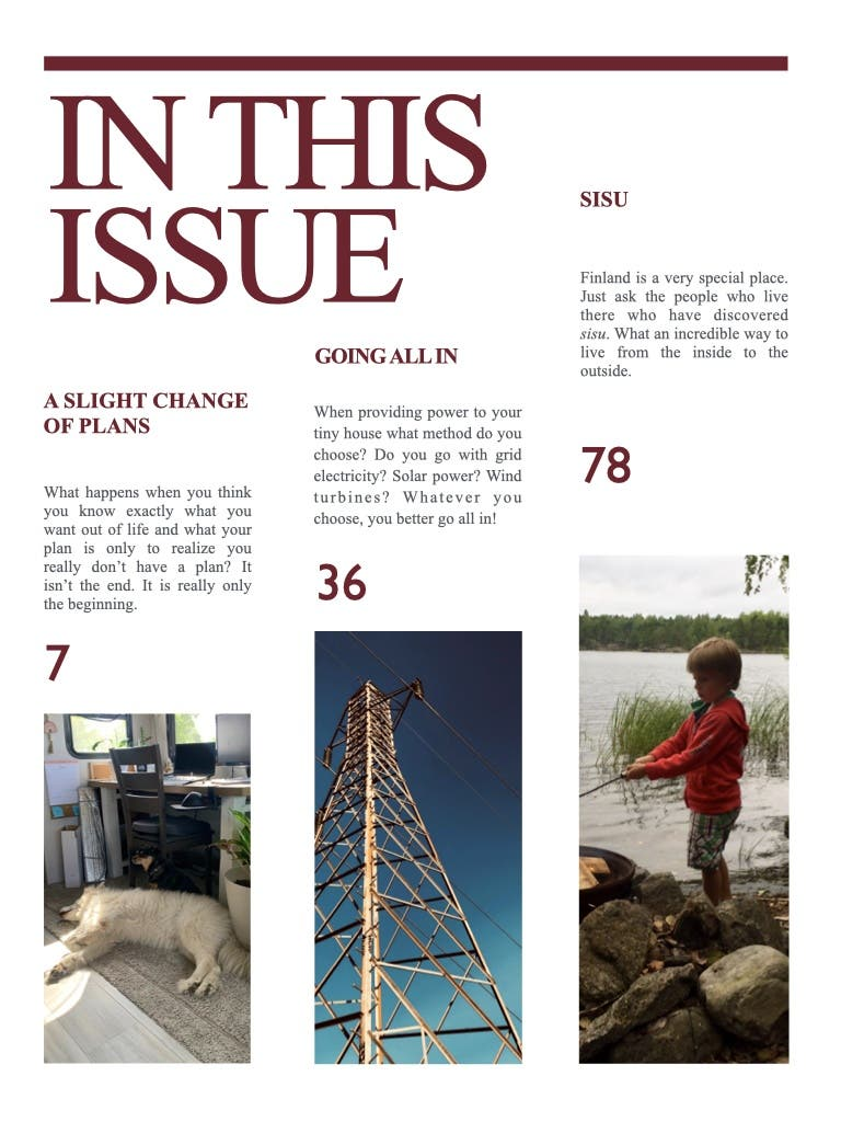 In this issue